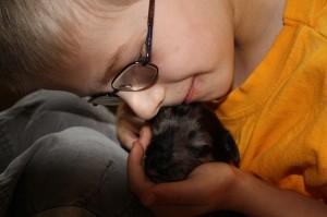 Kind und Hund - für beide Seiten ein tolles Erlebnis